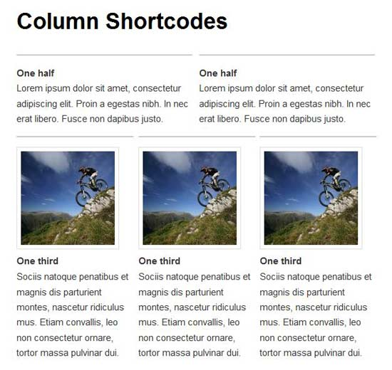 column-shortcodes