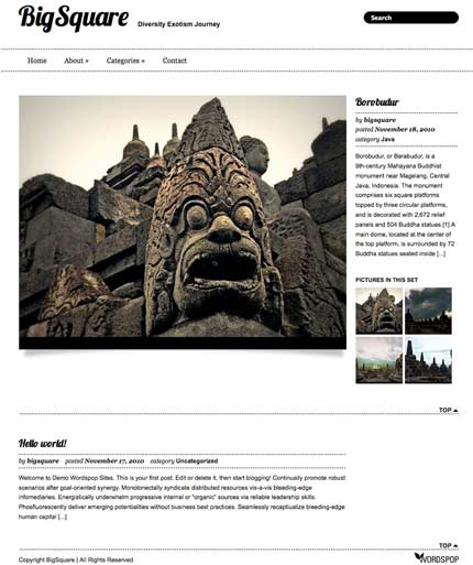 bigsqaure wordpress theme