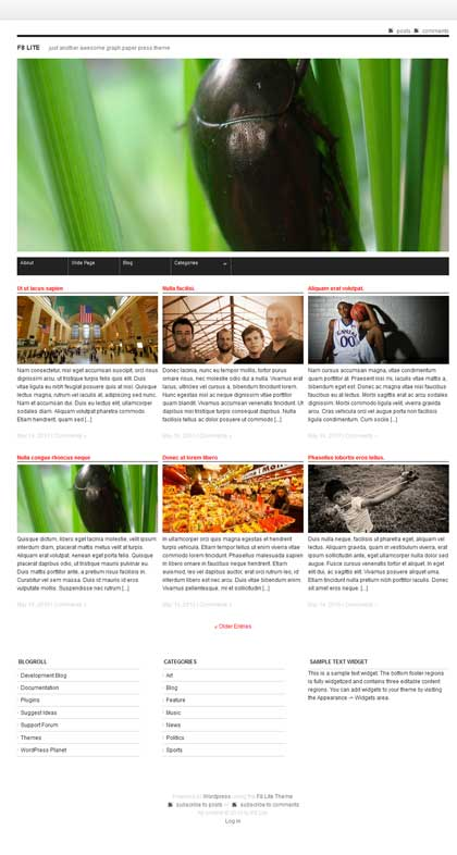 f8 lite free wordpress gird theme download