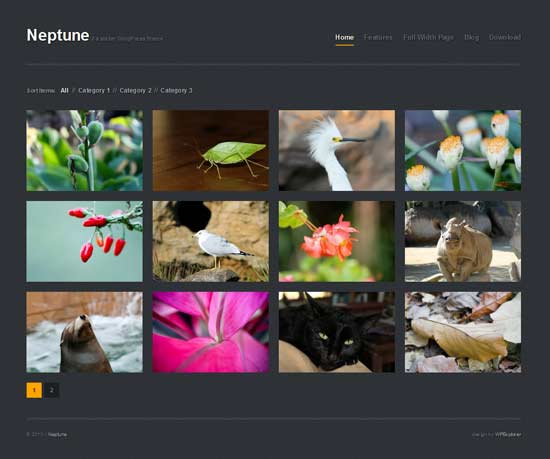 neptune wordpress theme