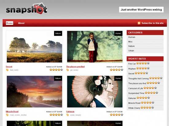 snapshot woothemes free portfolio wordpress
