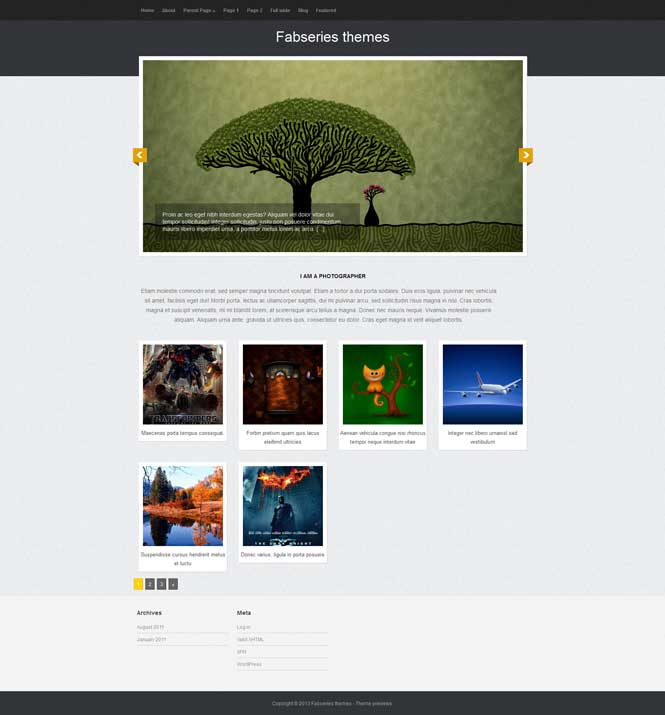 tiara wordpress theme