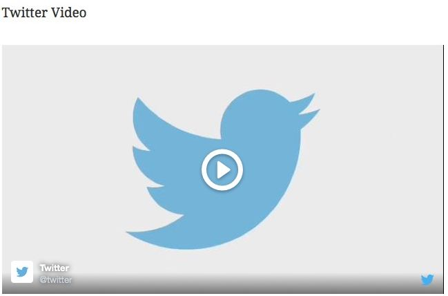 Twitter Video Embed