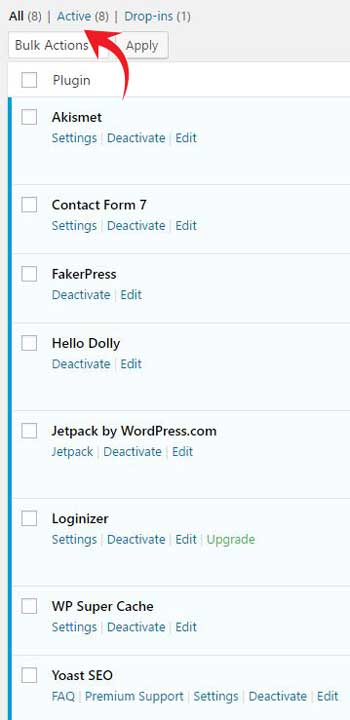Plugins Active WordPress