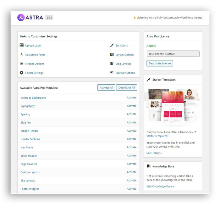 Astra theme options page